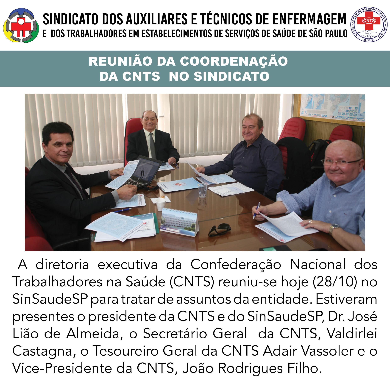 Reuniao CNTS