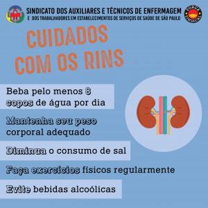 Cuidados com os rins (2)